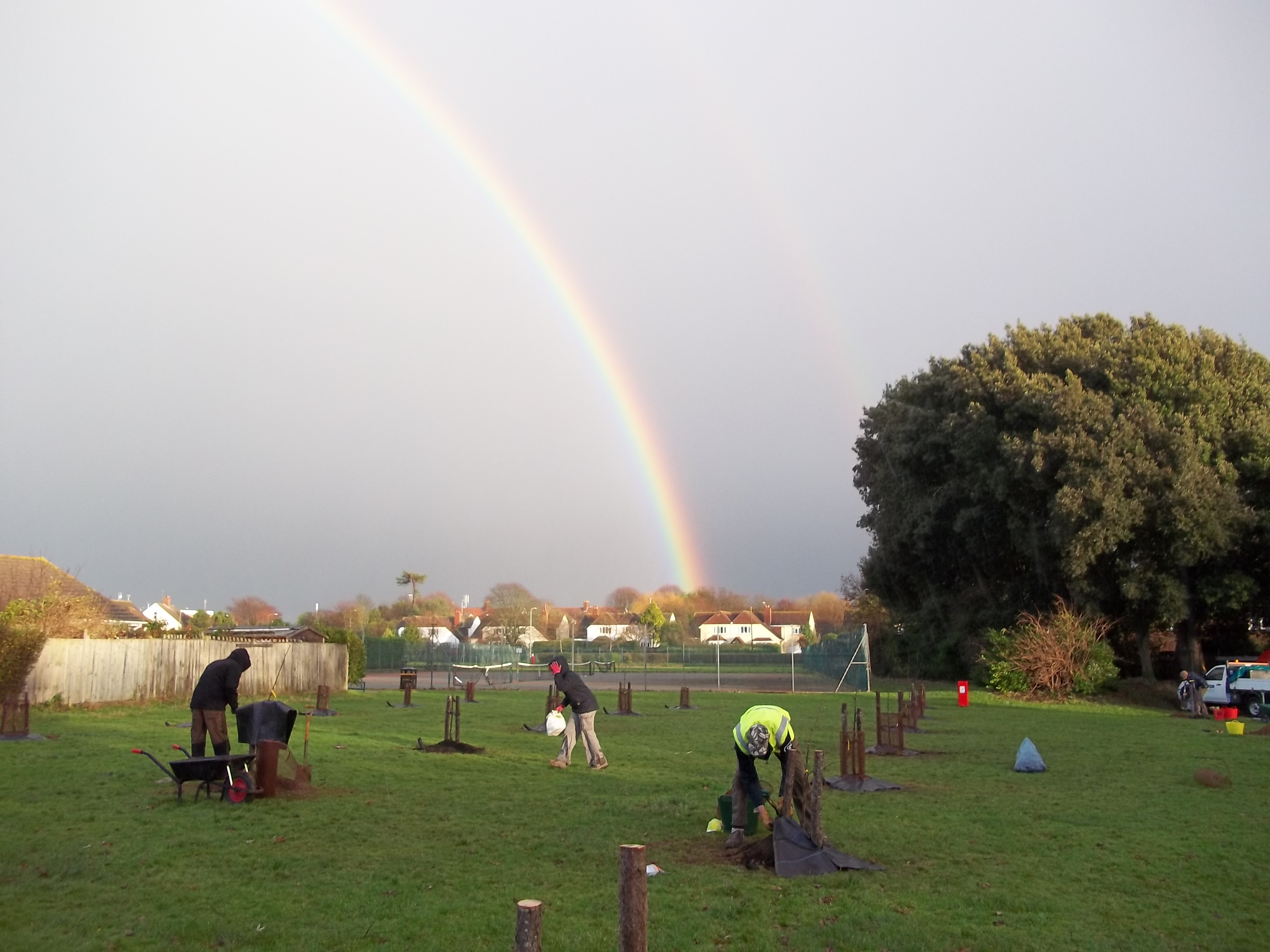 Maltravers Community Orchard